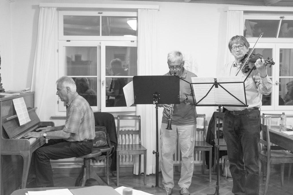 Markus Lang - Peter Ribler  - Gallus Heeb  spielen Appenzeller Volksmusik